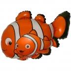 Рыба Клоун-2